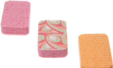 Casabella Scrubby Sponges Review