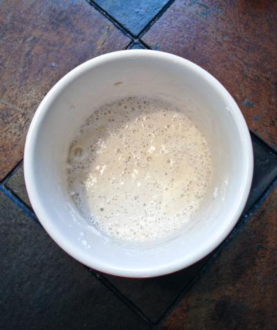 Sourdough Starter: Day 9