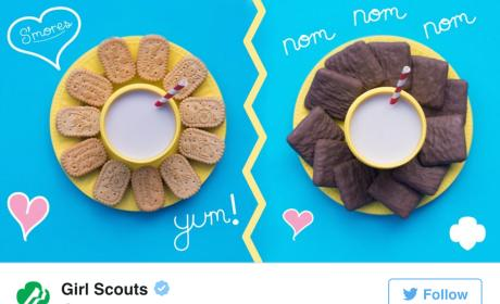 Girl Scouts Introduce NEW Cookie: What Is It?!?