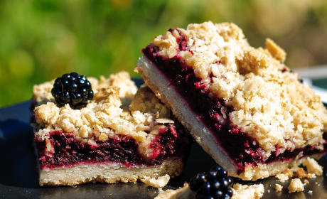 Blackberry Crumble Bars Recipe