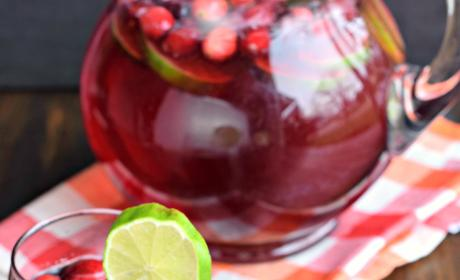 Cranberry Ginger Ale Punch Picture