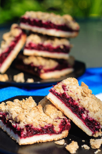 Blackberry Crumble Bars Picture