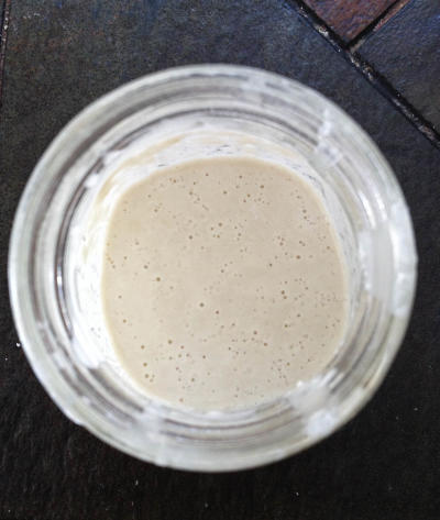 Sourdough Starter: Day 4