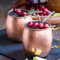 Cranberry Cider Mule Recipe