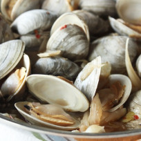 Clams-fennel-photo