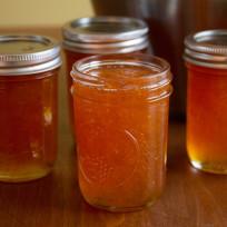 Canned grapefruit jam photo