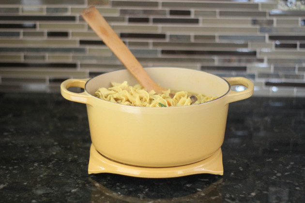 Chicken Noodle Soup Picture