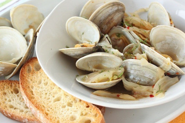 Clams and Fennel Picture