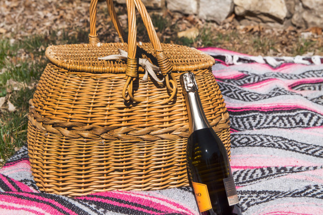 Bambeco Picnic Basket Photo